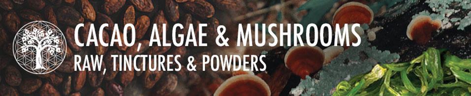 Cacao, Algae & Mushrooms
