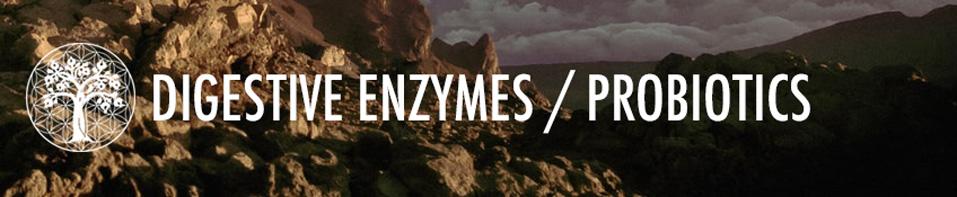 Digestive Enzymes / Probiotics
