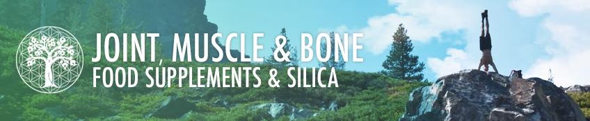 Joint, Muscle & Bone
