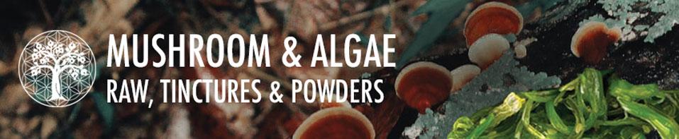 Mushrooms & Algae