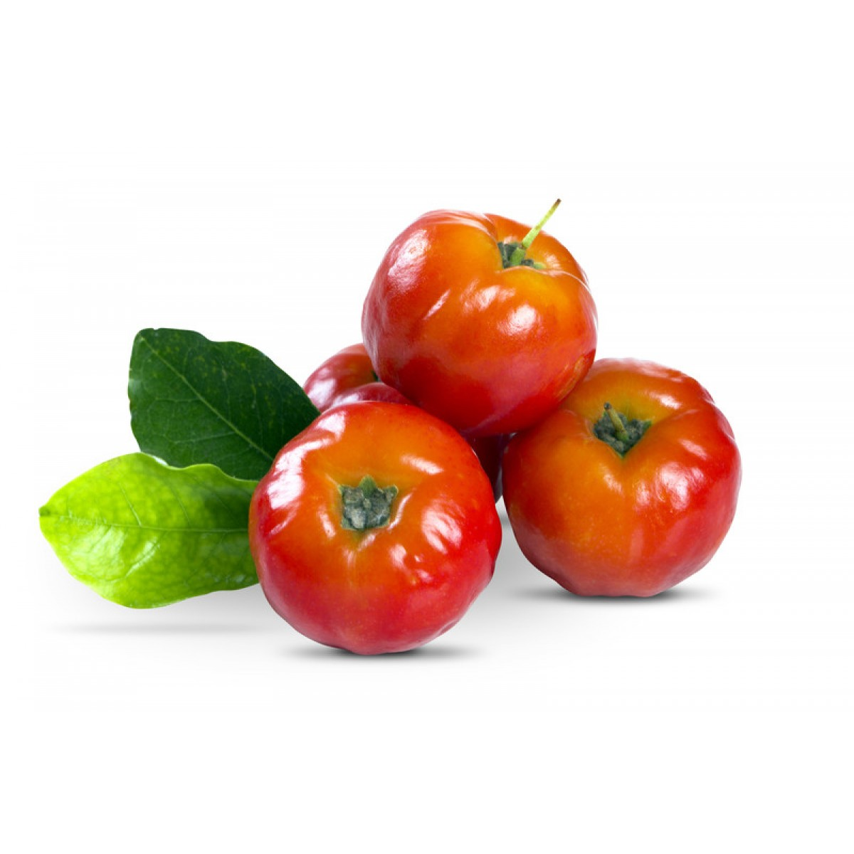 acerola_cherry_organic_extract_uk_eu.jpg