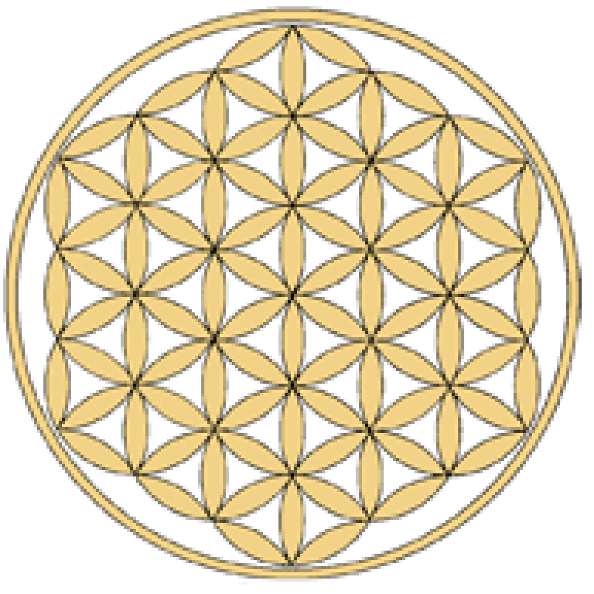 Energy Glass Flower Of Life Natures Design Ancient