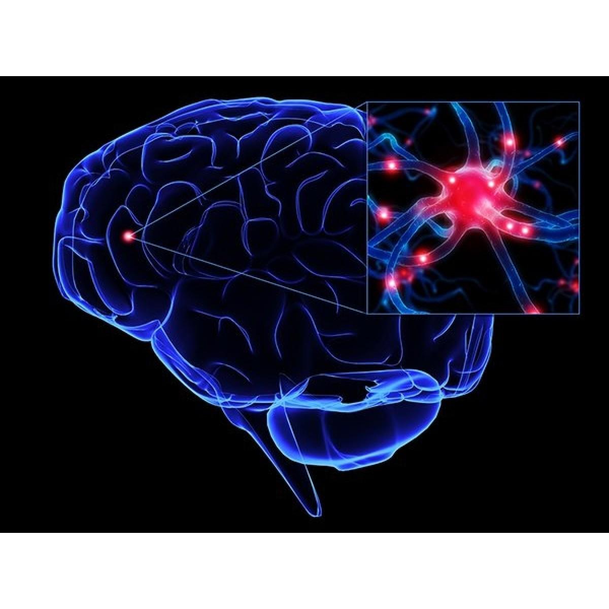 Vielight 810 Infrared Brain Intranasal Light Therapy