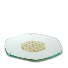 Glass Energy Plate