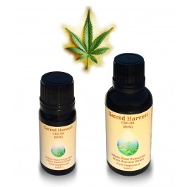 CBD Oil - Highest Potency (Whole Plant Infusion) 10/30/50ml