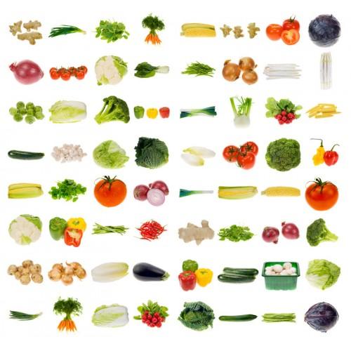 Dr Mercola Whole-Food Multi Vitamin / Minerals 240 Tablets ...
