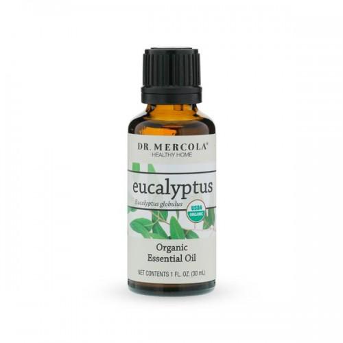 Eucalyptus Essential Oil - Organic (30ml)