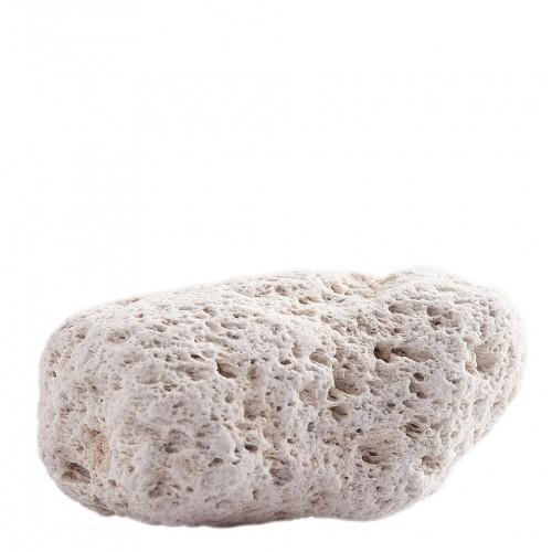 Pumice Stone (Foot Health)