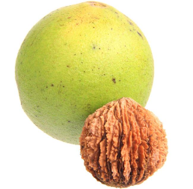 green_black_walnut_detox_parasite