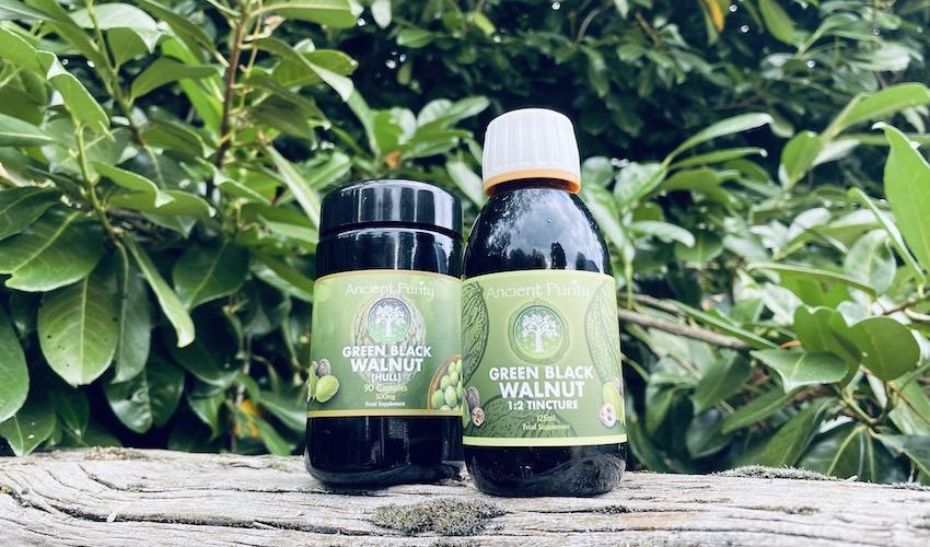 green black walnut parasite cleanse dr hulda Clarke