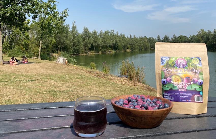 bilberry powder organic