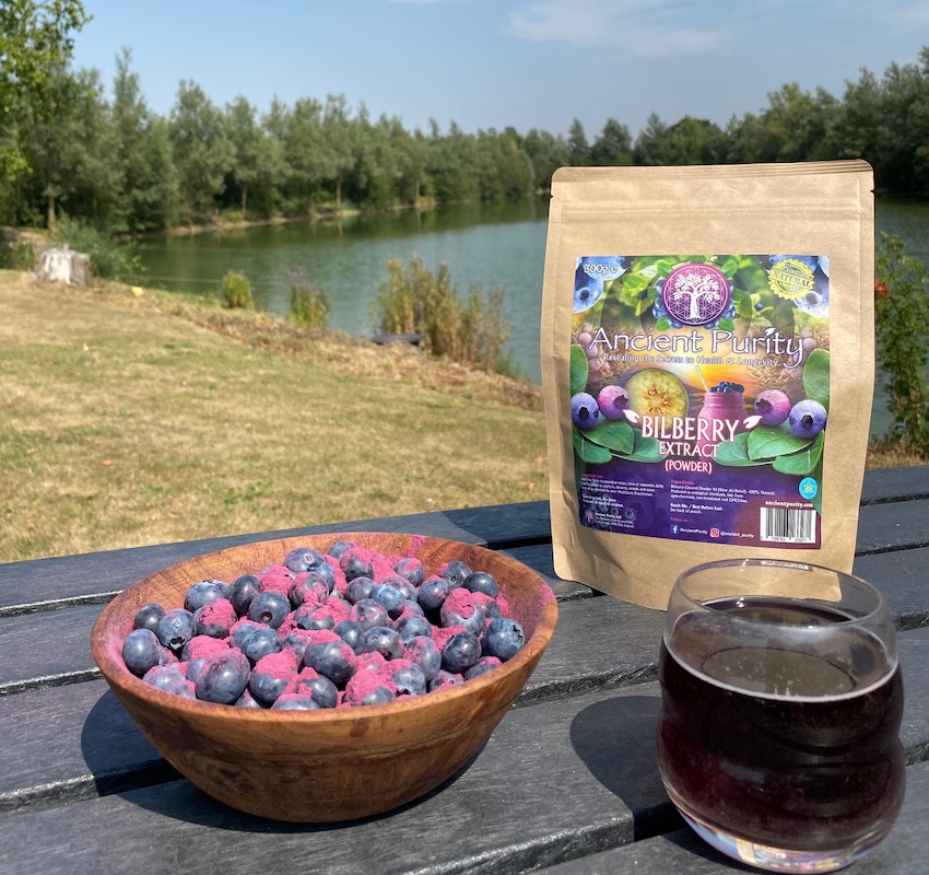 bilberry powder extract blueberry UK ancient purity