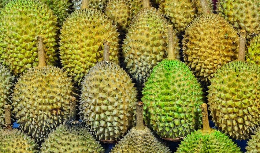 buy durian fruit UK