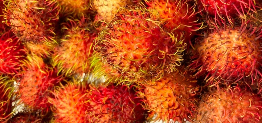 rambutan fruit powder UK