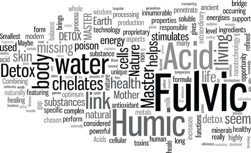 folic acid minerals supplement best detox fulvic acid
