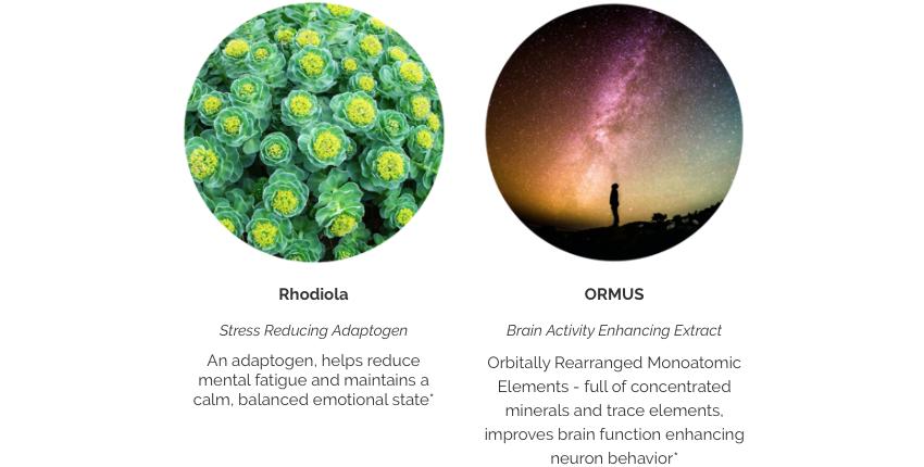 Gosha organics Odnova clarity