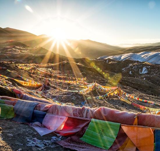 Tibetan Healing Ancient Purity