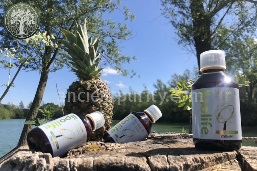 lipolife pineapple C vitamin C