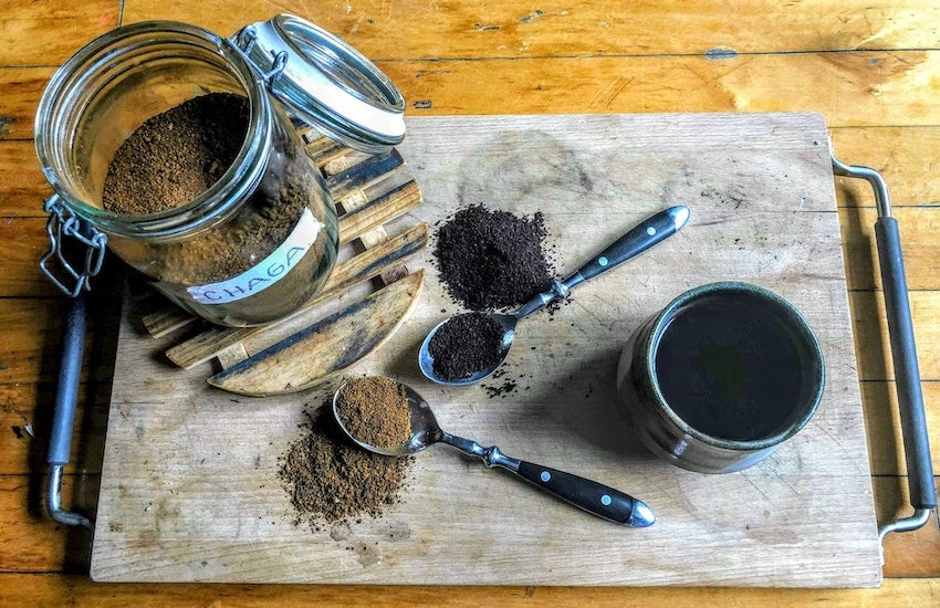 ancient purity Chaga pieces