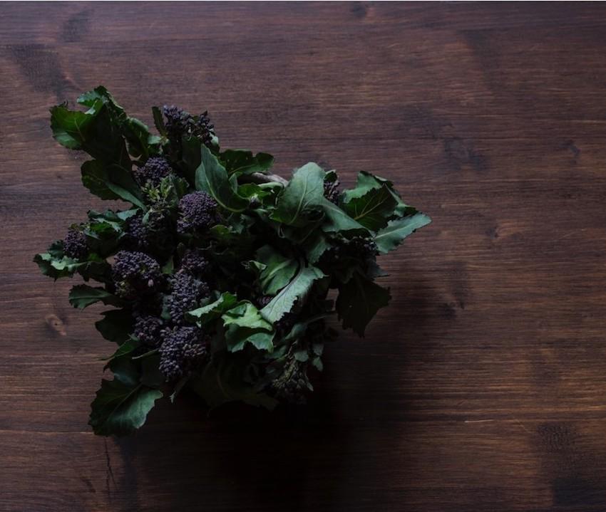 dr mercola UK fermented broccoli