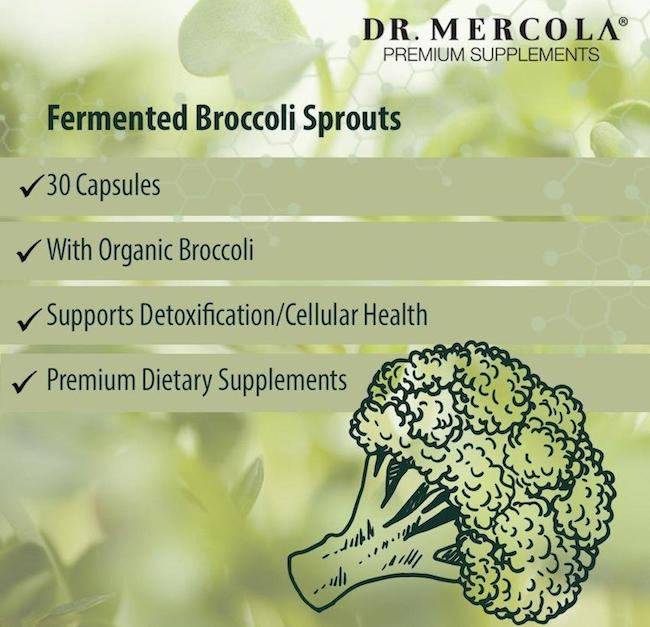 fermented broccoli sprouts mercola UK