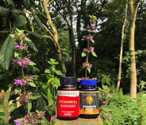 mercola vitamin k2 supplement