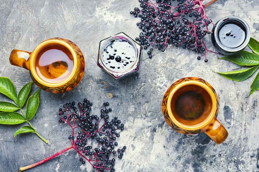 organic english elderberry oil