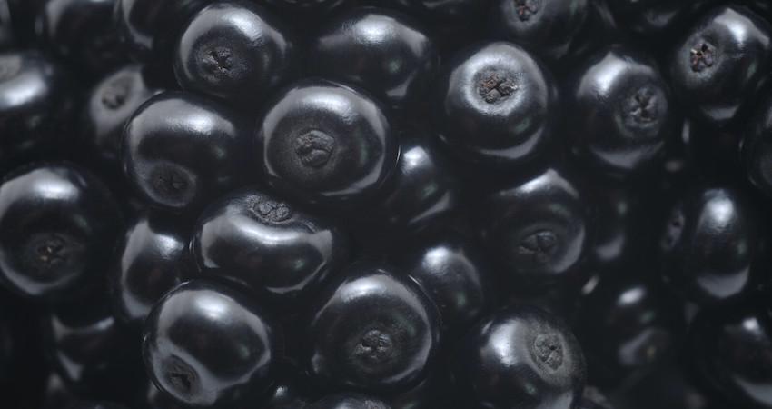 how to use elderberry oil