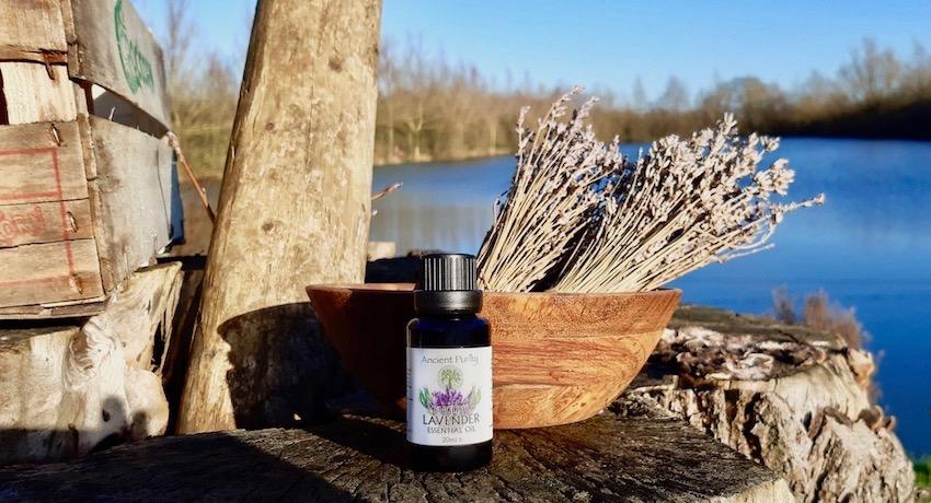 ancient purity enlgish lavendar essential oil