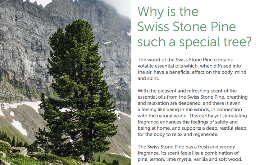 natures design pinus cembra swiss stone pine products