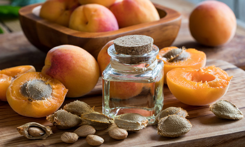 world without cancer apricot kernels
