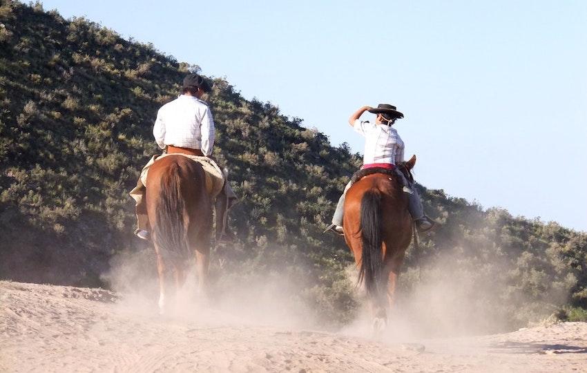 guachos Argentina Bombillas straw natural