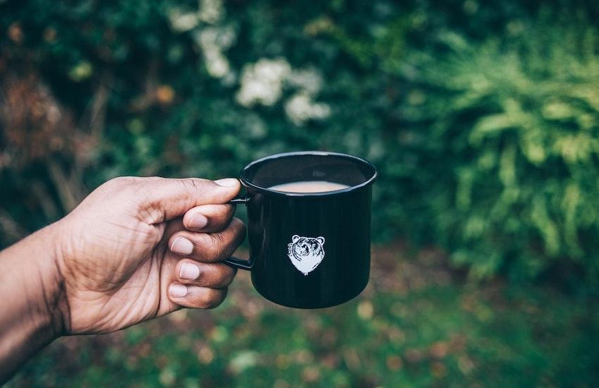 organic biodynamic breakfast tea