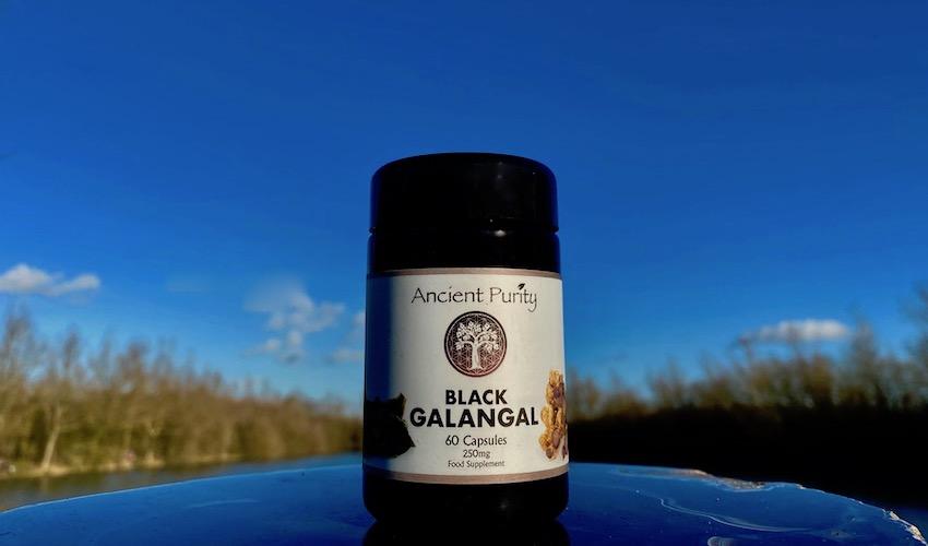 black galangal natural Thai viagra