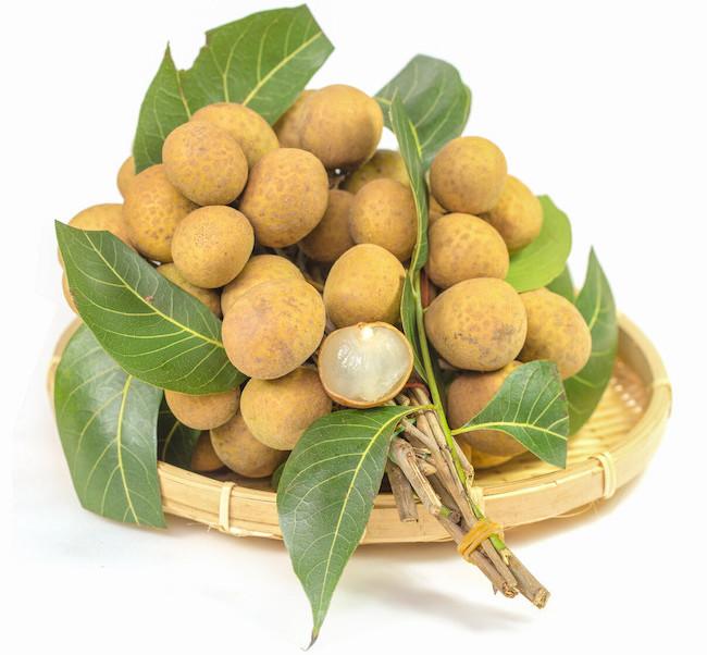 longan fruit powder extract Chinese medicine