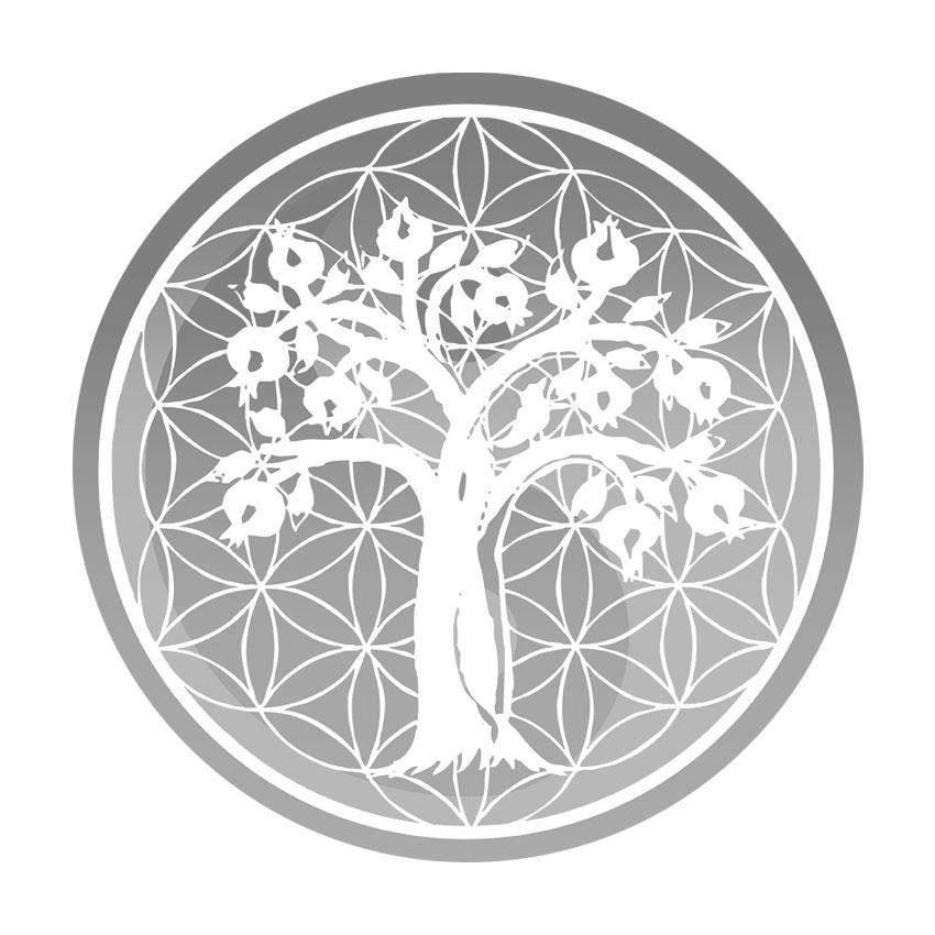 Alliance Natural Health