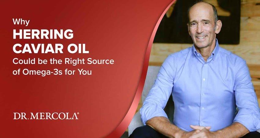 mercola UK caviar oil supplement