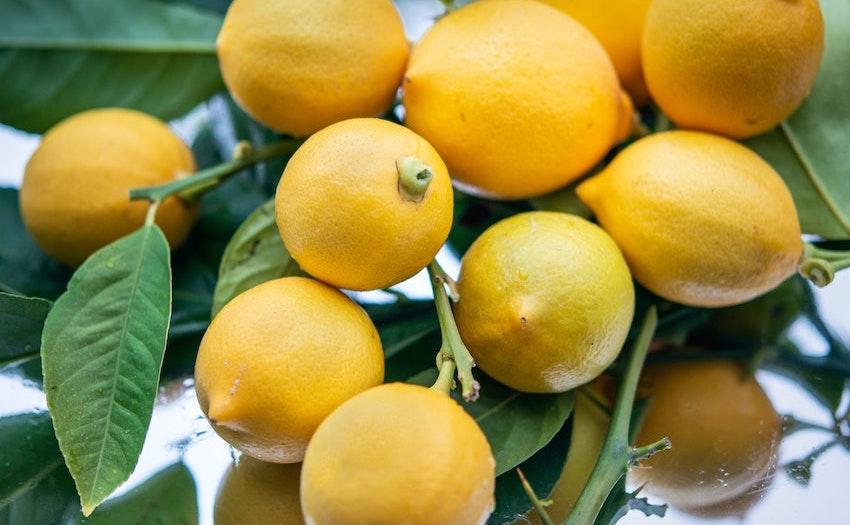 lemon deodorant