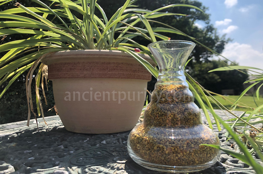 natures design sacred geometry glassware