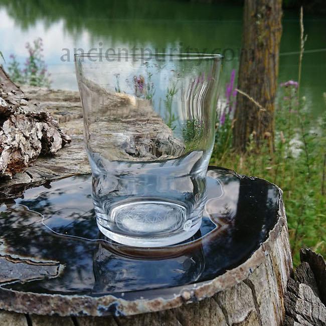 sacred geometry glasses jasmina natures design