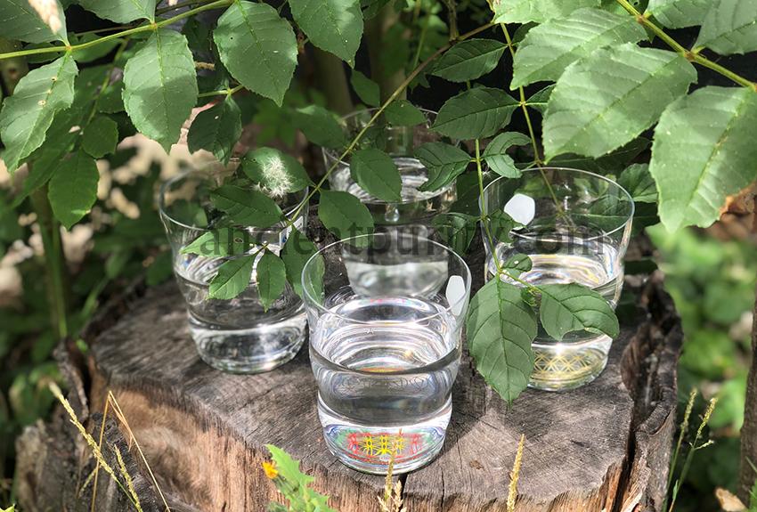 natures design jasmine glasses