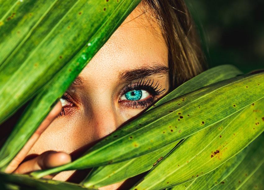 elder flower for eye bags