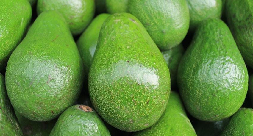 avocado david wolfe beauty