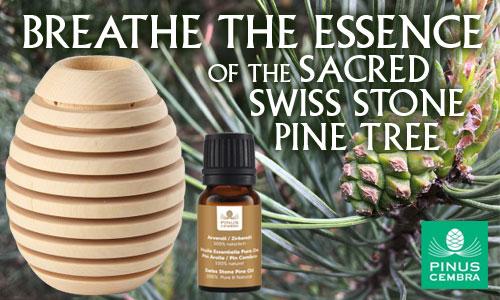 Pinus Cembra Diffuser